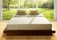 Essentia Beausommet Natural Organic Memory Foam Mattress